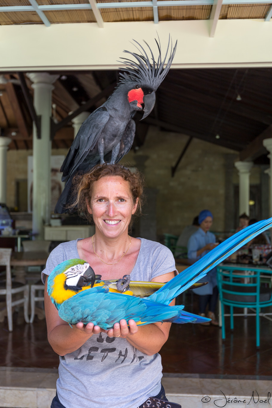 Bali Bird Park - Maman bébé