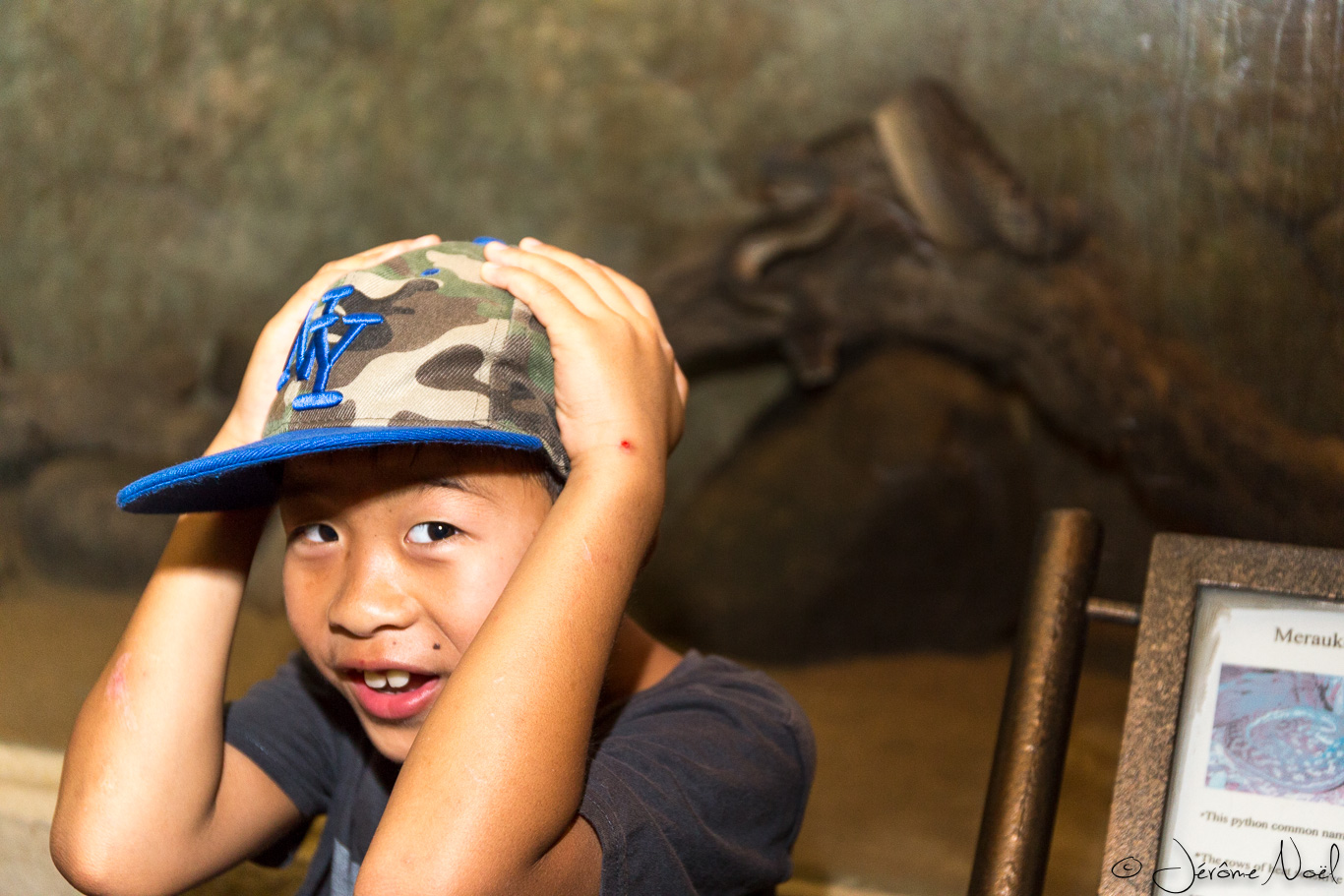 Bali Reptile Park - Luka est attaqué !