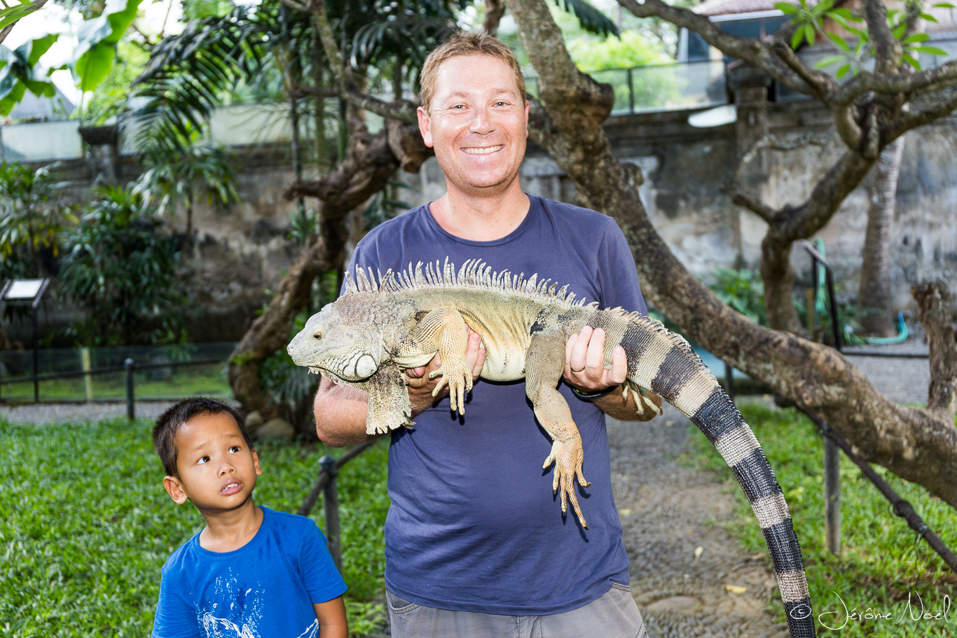 Bali Reptile Park - Papa iguane