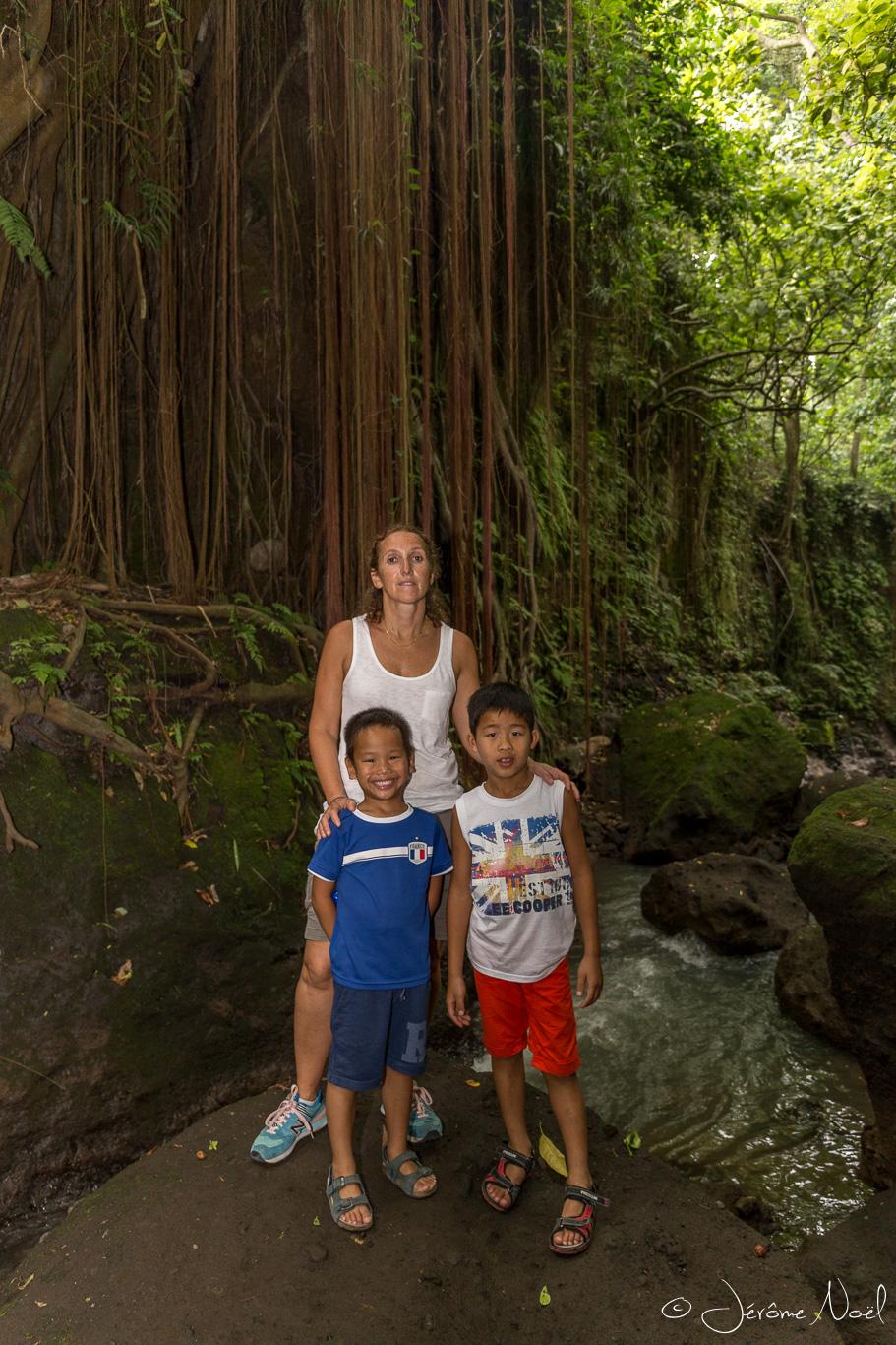 Monkey Forest - Lianes