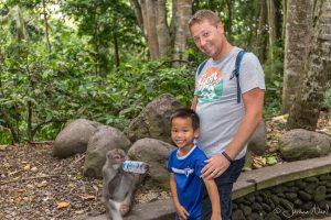 Monkey Forest - Thomas & Papa