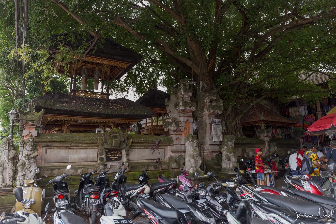 Ubud - Temple & scooters
