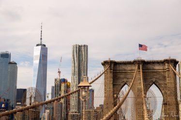 One World Observatory & Brooklyn Bridge